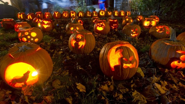 Pumpkin images for Halloween
